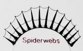 Red Cherry Spider lashes provides eye opening dramatic weblike lash look.